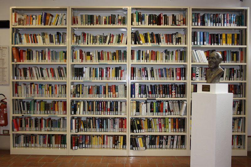 Scaffalature Per Biblioteca.La Biblioteca